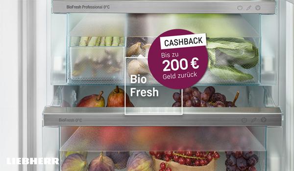 Bis zu € 200 Cashback für Ihren Frischekick!